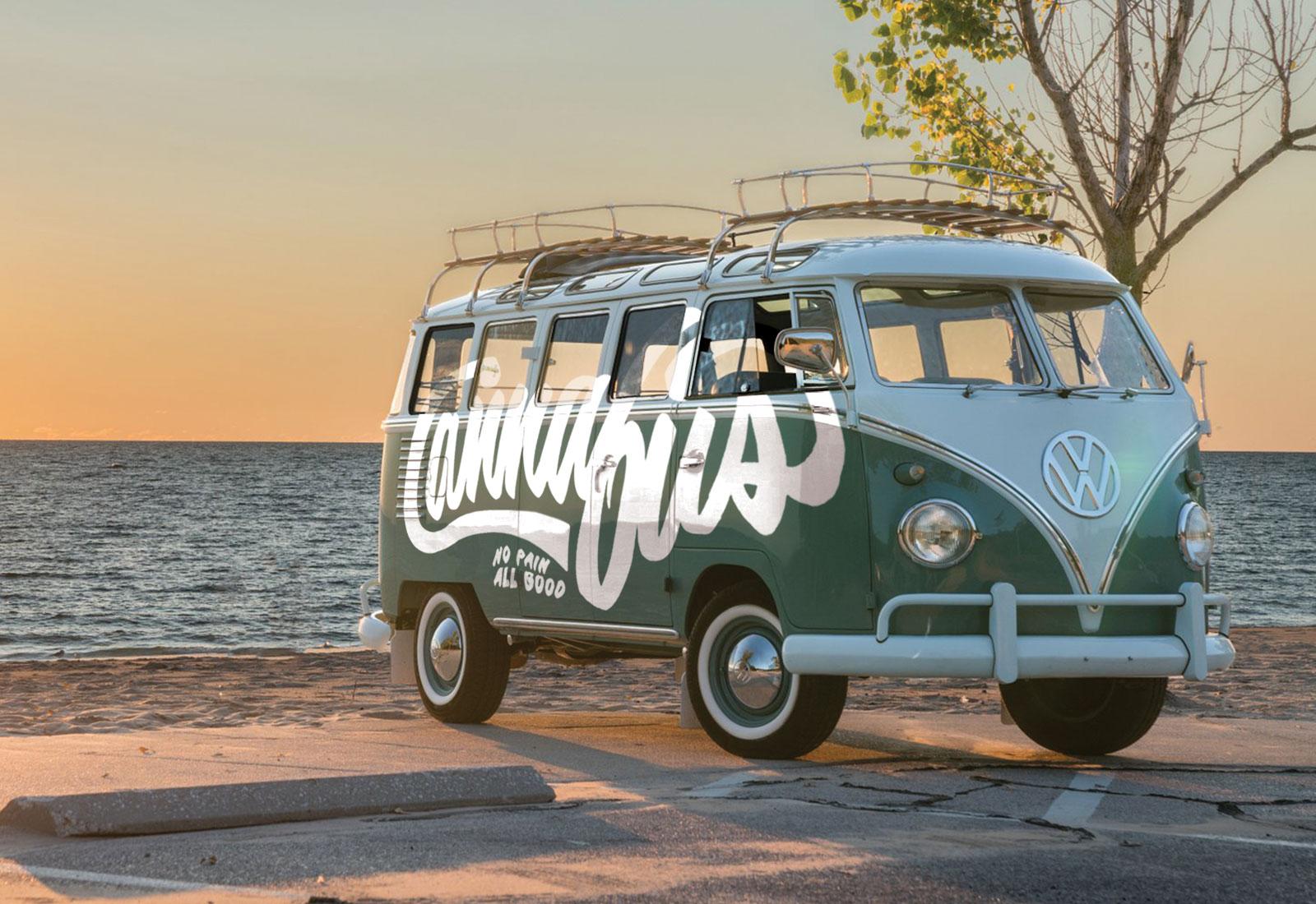 Cannabliss Dispensary VW Bus Swag Van