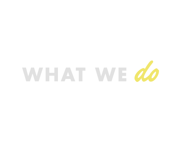 What We Do Header Image