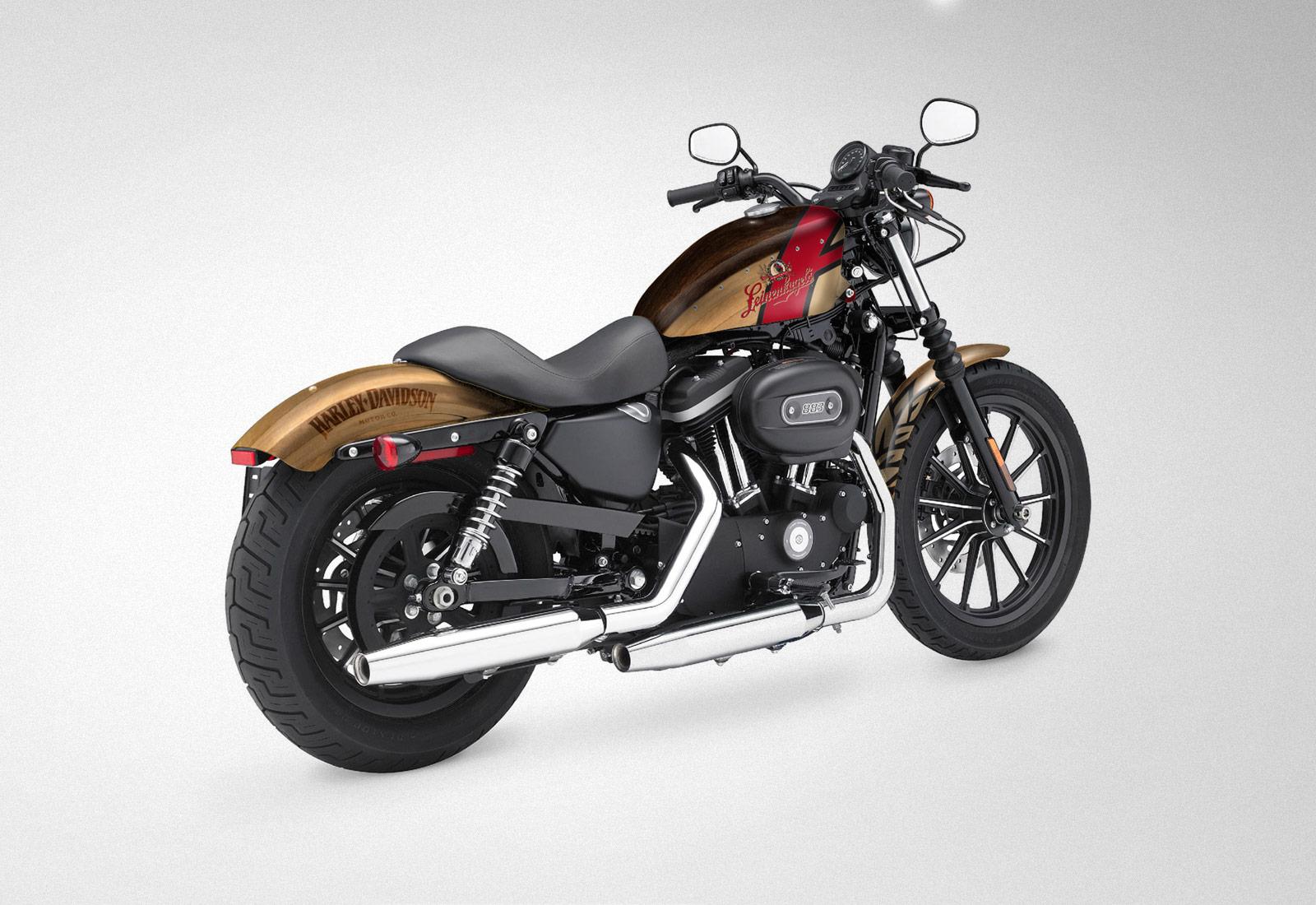 Harley Davidson 883 Leinenkugel