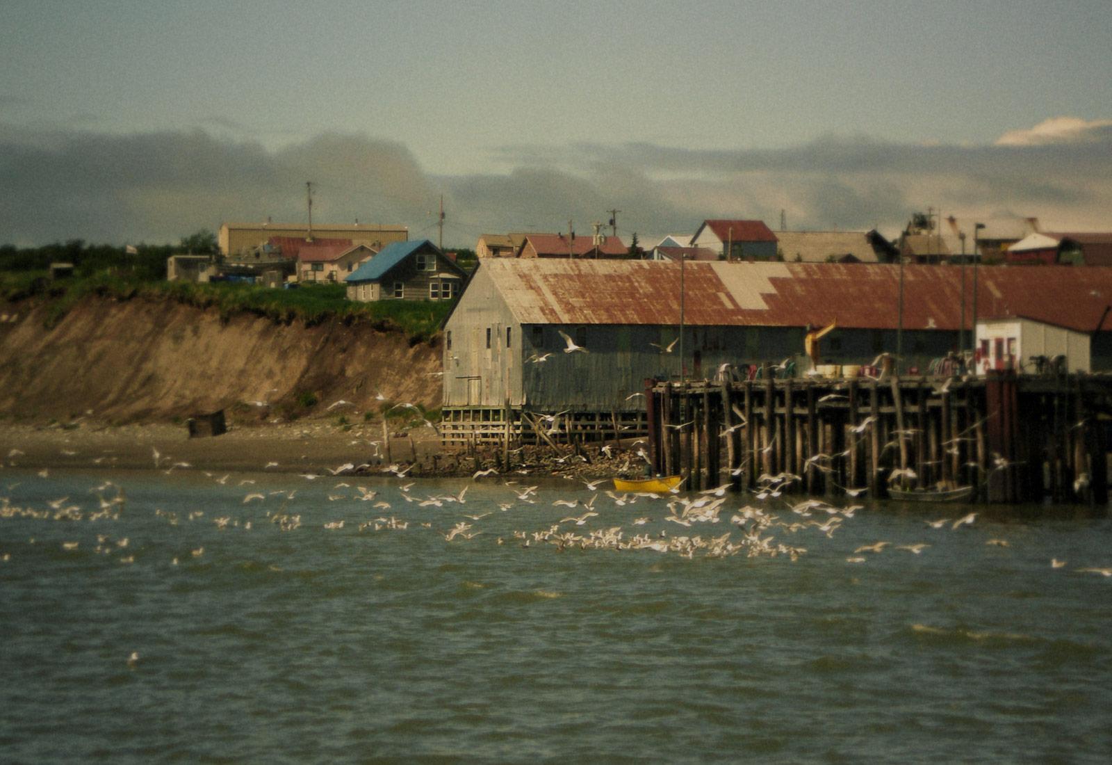 Bristol Bay Alaska Scenery 2